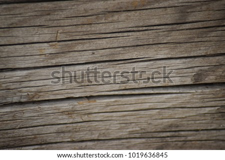 Crooked wood bark texture. #1019636845