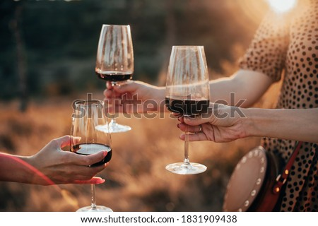 Crop anonymous female friends toasting with glasses of red wine during outdoor party in summer evening in countryside