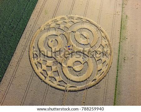 Crop circle in a cornfield at Rasiting, Upper Bavaria, Bavaria, Germany, Europe #788259940