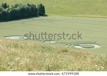 Crop Circle in green field #671999188
