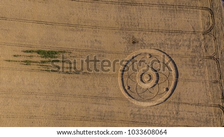 Crop Circles in the wheat fields #1033608064
