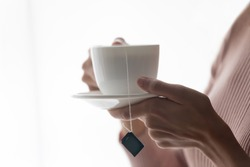 Crop close up of female hands hold white porcelain mug with bag inside, drink hot black green tea at home. Woman client enjoy warm brew or beverage in cup, relax rest having break indoors