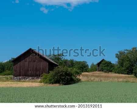 Crop field and two old wooden barns with stone foundations. Clear blue sky in summer. A fence is visible and trees surround the barn. Shot in Sweden, Scandinavia at Björkö, Birka. Stock fotó ©