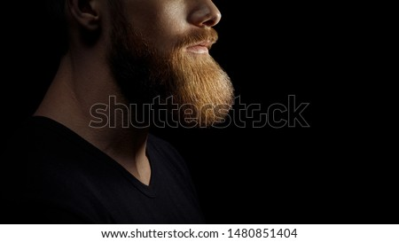 Croped shot of the beard. Young bearded caucasian male model dramatic light studio shot. Grooming and barbershop commercial adv concept copy free space