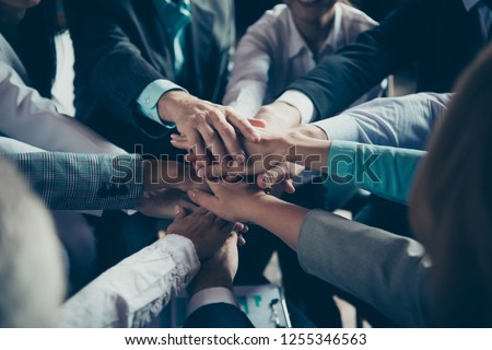 Cropped close-up of hands elegant classy chic stylish trendy professional business people sharks ceo boss chief company management development at work place station