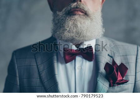 Cropped close up photo of grey-haired luxurious trendy detailed man's beard, dressed in checkered jacket vinous bow-tie, pocket tissue, drecc-code, wealthy chic elegant man isolated on gray background