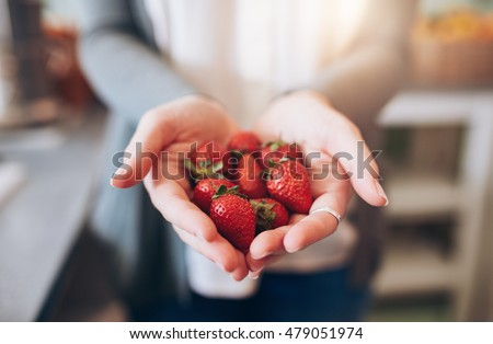 Cropped image a woman's hands holding a bunch of strawberries. Female holding a handful of fresh strawberries. #479051974