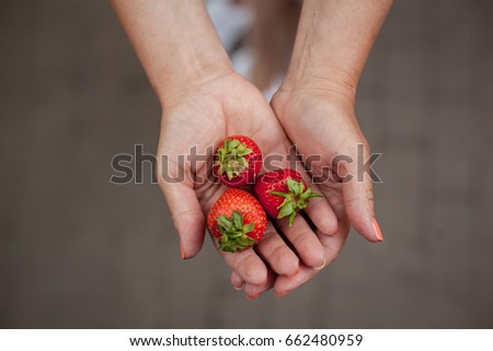 Cropped image a woman's hands holding a bunch of strawberries. Female holding a handful of fresh strawberries.  handful of fresh, ripe strawberries. Woman Holding Strawberries #662480959
