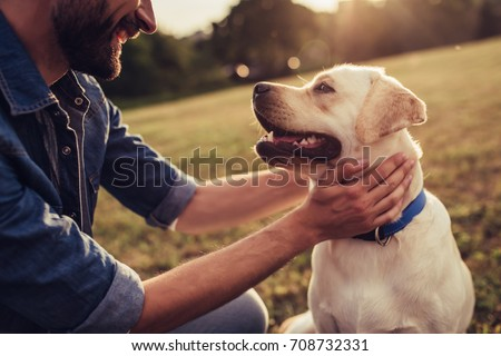 Cropped image of handsome young man with labrador outdoors. Man on a green grass with dog. Cynologist - Shutterstock ID 708732331