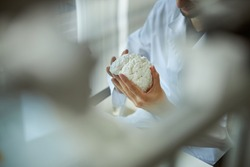 Cropped photo of a bearded man in a lab coat scrutinizing the 3D printed brain model