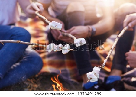 Cropped shot of friends roasting sweet marshmallows on bonfire, faceless picture of group of people spending spare time together in sunny summer day, sitting on ground. Free time and activity concept.
