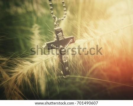 Cross #701490607