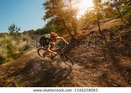 Cross-Country biker on forest trail. Male cyclist rides the rock