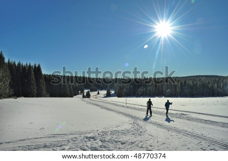 cross-country ski in winter country