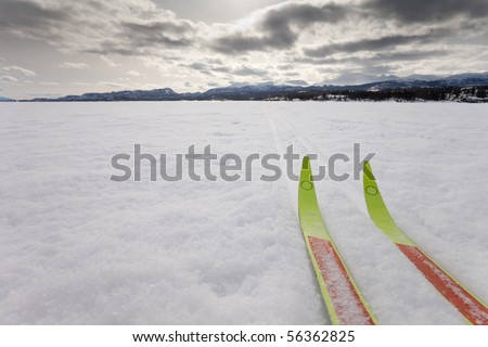 Cross country skiing. Skis in tracks on frozen lake with distant shoreline. Perfect winter snow conditions.