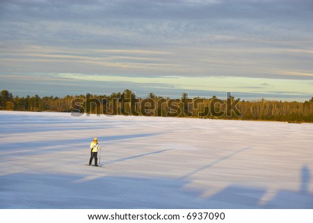 Cross-country winter skiing on the lake?s ice in Voyager National Park