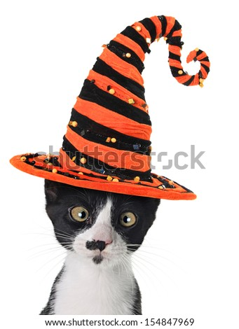 Cross eyed kitten wearing a Halloween witch hat.  - stock photo