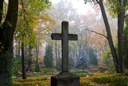 cross in fog at the cemetery