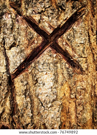 Cross marking carved in a tree bark