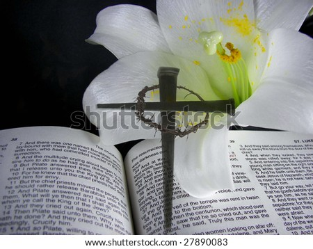 cross of nails in lily on bible