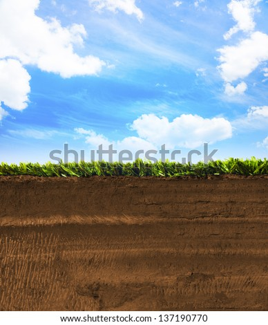 Cross section of earth with grass Stock photo ©
