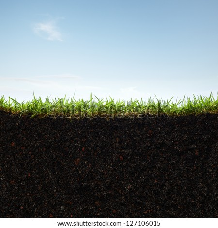 cross section of grass and soil against blue sky #127106015