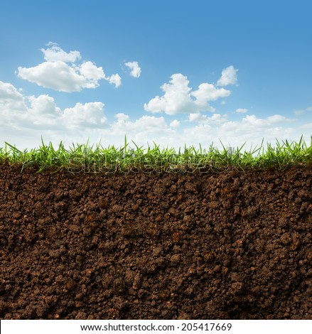 cross section of grass and soil against blue sky #205417669