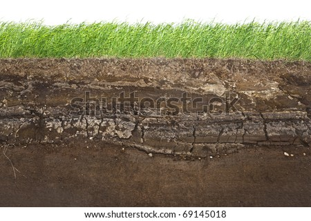 Cross section of green grass and underground soil layers beneath Stock photo ©