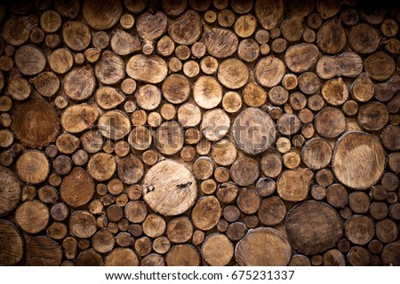 Cross section of tree trunks background. Decoration of cutting tree. Cutting tree trunks placed together for interior decorate, background