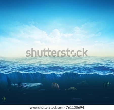 cross section water, ocean slice, fishes under water. 3d illustration
