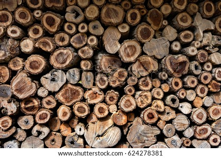 Cross Sectional Wooden Background,Different sections of the tree.Pile of chopped fire wood prepared for winterCutting wood is arrange to be the natural wall at farm in Thailand,selective focus #624278381