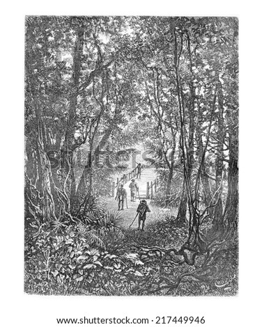 Crossing a Small Bridge in the Jungle in Oiapoque, Brazil, drawing by Riou from a sketch by Dr. Crevaux, vintage engraved illustration. Le Tour du Monde, Travel Journal, 1880 Photo stock ©