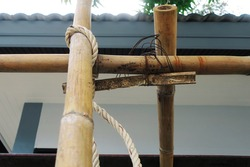 Crossing bamboo stem with rope and steel wire that for scaffolding to renovate the building
