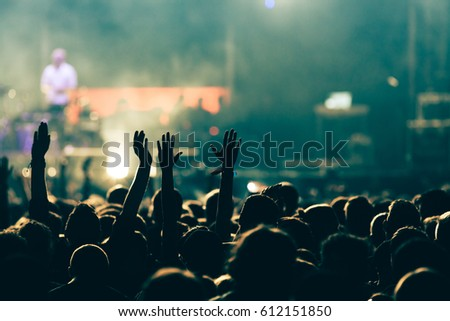 crowd at concert - summer music festival #612151850