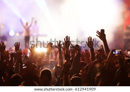 crowd at concert - summer music festival #612941909