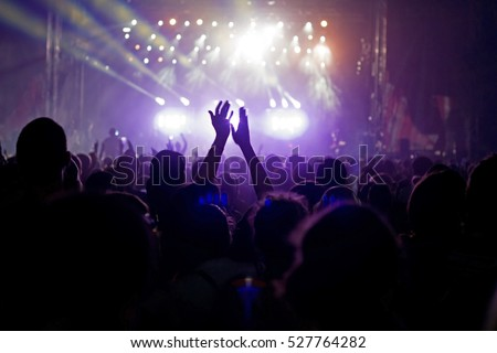 crowd at popular music concert. ...