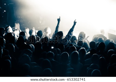 crowd during a concert #653302741