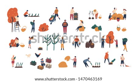 Crowd of tiny people gathering crops or seasonal harvest. Bundle of men and women collecting ripe fruits, berries and vegetables isolated on white background. Flat cartoon illustration.