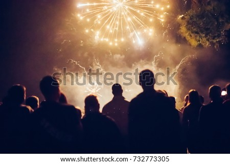Crowd watching fireworks #732773305