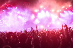 crowd with raised hands at concert festival