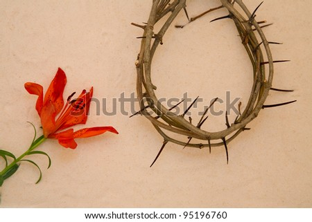 Crown of Thorns and orange Lily on sand background