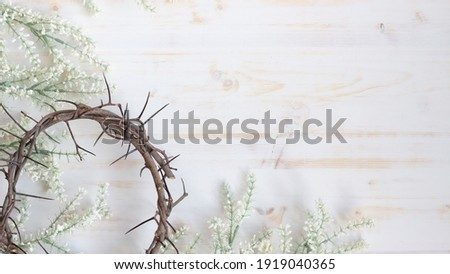 crown of thorns and white flowers border Stockfoto ©