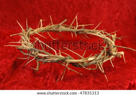 Crown of Thorns on a rich red background.