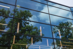 Crowns of trees reflecting in the window pane. Trees and clouds are reflected in the glass of the window,