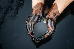 Crude oil in a bowl of hands on the background of a black oily puddle. The process of processing petroleum products. Folded cups of hands with fuel oil. Сrisis of the oil industry. Economic downturn.