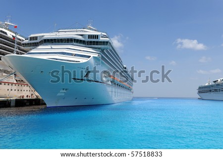 Cruise ships docked in tropical port during sunny day