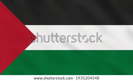 Crumpled Fabric Flag of Palestine Intro. Palestine Flag. Oriental Flags. Middle East Flags. Celebration. Flag Day. Patriots. Realistic Animation 4K. Surface Texture. Background Fabric.