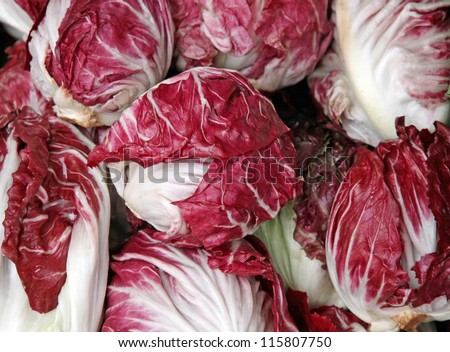 crunchy red radicchio heads for sale at vegetable market