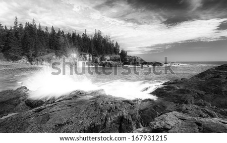 Crushing wave in Acadia national park, in black and white with cloudy sky