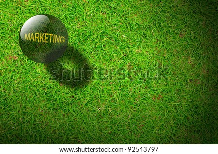 Crystal ball with the word Marketing on Green grasses background